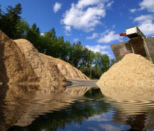 Storage of wooden biomass